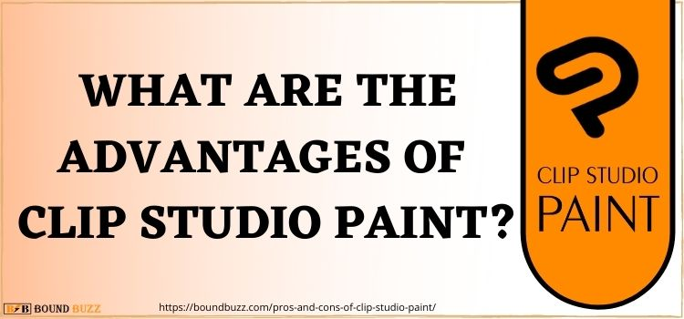 What Are The Advantages Of Clip Studio Paint www.boundbuzz.com